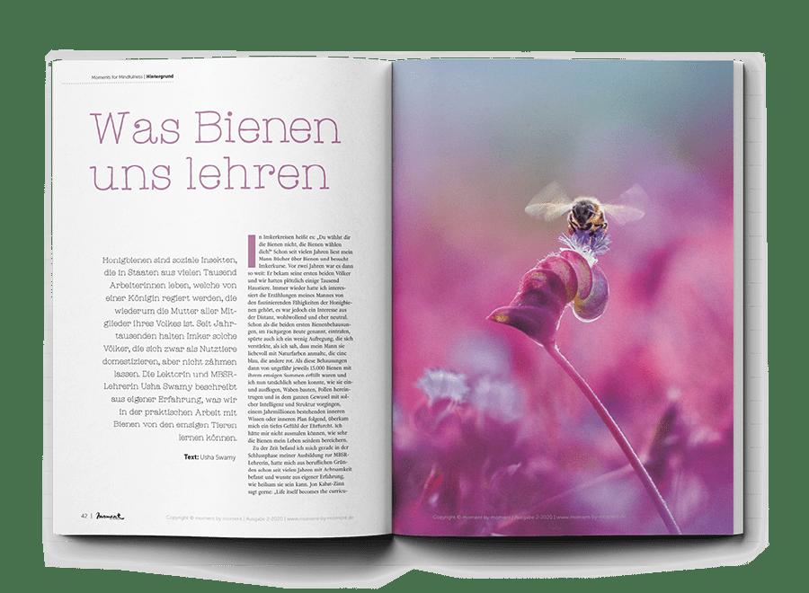 moment by moment 02/2020 Vorschau Vorschau Was Bienen uns lehren