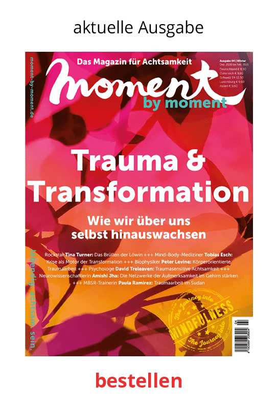Cover moment by moment 04/2020 Trauma und Transformation