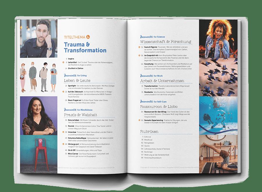 Inhaltsvorschau moment by moment 04/2020: Trauma und Transformation
