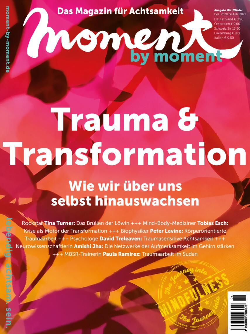 Cover Trauma und Transformation Highres